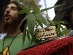 """(FILES) In this file photo taken on May 06, 2017 a man holds a cannabis plant with a sign reading """"Not to jail for growing me"""" during a demo, part of the Global Marijuana March in Buenos Aires. - Argentina legalised the self-cultivation of cannabis for medicinal use and the sales of therapeutic oils in pharmacies, through a decree published on the official journal on November 12, 2020. (Photo by JUAN MABROMATA / AFP)"""