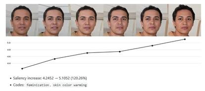 Detalhe do projeto de Kulynych: aqui se vê como o algoritmo pontua progressivamente melhor as imagens da direita pela feminilidade e o tom de pele mais rosado.