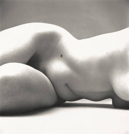 Nude No. 72, Nova York, 1949-50
