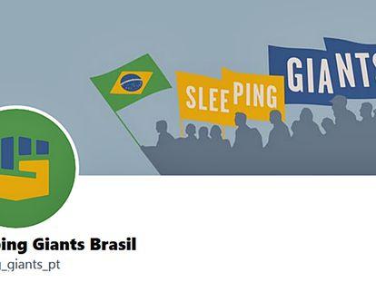 Sleeping Giants começou a operar no Brasil em maio deste ano.