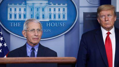 O presidente Donlad Trump e o epidemiologista Anthony Fauci, na Casa Branca, em 17 de abril. Em vídeo, Trump diz ter uma boa relação com Fauci.