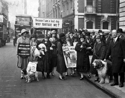 Manifestação de defensores dos animais em Londres, em janeiro de 1925.