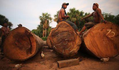O desmatamento atinge a região de Madre de Dios (Peru).
