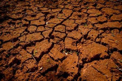 O chão de terra rachado pela seca no local onde ficava um açude em Fernandópolis (SP)