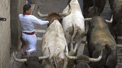 Un mozo corre ante los toros de la ganadería de Miura.