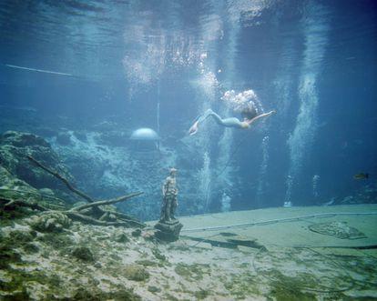 The mermaid (La sirena) Weeki Wachee Springs, Florida 2017