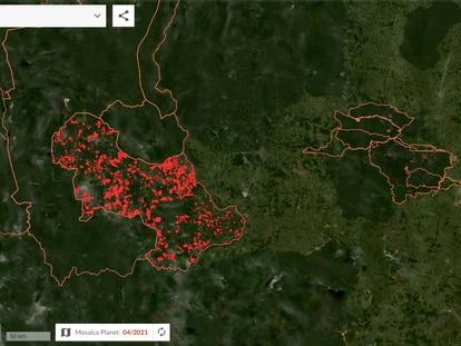 Alertas em Triunfo do Xingu (PA), a unidade de conservação com maior área de desmatamento detectado em 2020.