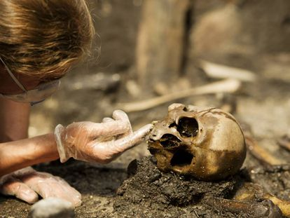 Pesquisador analisa um crânio no jazigo de Alken Enge (Dinamarca).