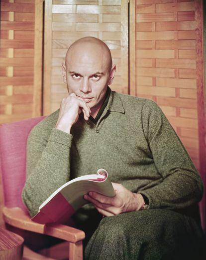 Retrato do ator Yul Brynner com um roteiro nas mãos, em 1960.