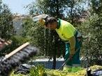DVD 737 (27-07-15) Calor en Madrid. Un operario de jardineria (jardinero) se refresca con una botella de agua durante la mañana en Madrid Rio © Kike Para