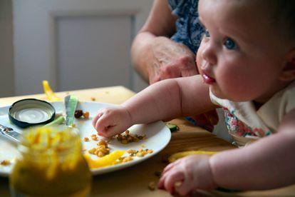 Um bebê come seguindo o método Baby Led Weaning (BLW).