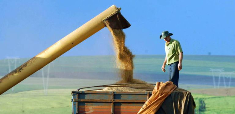 O grande impulso para o desempenho da economia no primeiro trimestre foi a agropecuária.