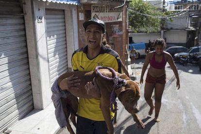 Um jovem carrega seu cachorro baleado durante o tiroteio na Rocinha.