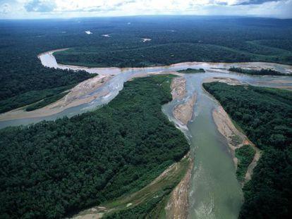 Imagem da floresta amazônica no Peru.