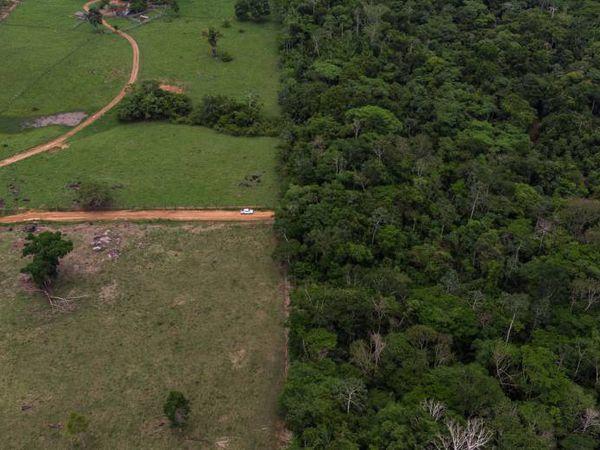 Território indígena dos Suruí, no Estado de Rondônia, na Amazônia.