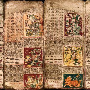 Considerado el texto más antiguo de América se trata de un 'libro' escrito por los mayas de Chichen Itzá. Exhibido en Alemania, el códice llegó originalmente a España en 1519 enviado por Hernán Cortes al Rey. Desde España viajó a Austria y en 1739, Johann Christian Götze, director de la Biblioteca Real de Dresde se lo compró a un propietario privado de Viena. Durante la II Guerra Mundial, la biblioteca donde se guardaba el códice fue alcanzada por los bombardeos y el códice sufrió daños importantes por el agua, pero fue meticulosamente restaurado. El códice fue fundamental para interpretar la fonética maya descifrada por Yuri Knorozov en los años 50, en base al imperfecto alfabeto de Diego de Landa alrededor de 1566.