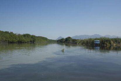 Encontro das águas do rio Arroio Fundo com a lagoa de Camorim. A cor mais escura indica maior quantidade de esgoto.