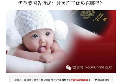 Reprodução de um site chinês de 'turismo de maternidade'.