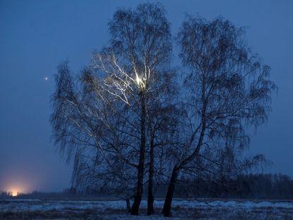 Na imagem, Alexéi Dudoladov, estudante e blogueiro, na bétula em que sobe para captar melhor o sinal da Internet na remota aldeia siberiana de Stankevichi, em 13 de novembro. No vídeo: Como subir em uma árvore, em um vídeo do TikTok