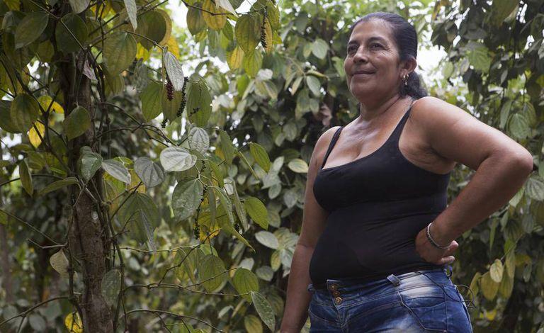 Doris Ramos e sua família cultivaram coca durante muito tempo no município de Tumaco.