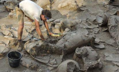 O arqueólogo Zach Dunseth, com as ânforas de vinho encontradas nas ruínas de um palácio em Nahariya (Israel).