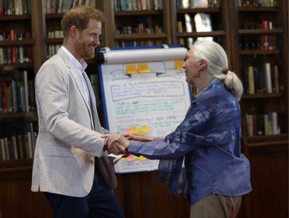 Jane Goodall e o príncipe Harry se cumprimentam em Windsor, en julho de 2019.