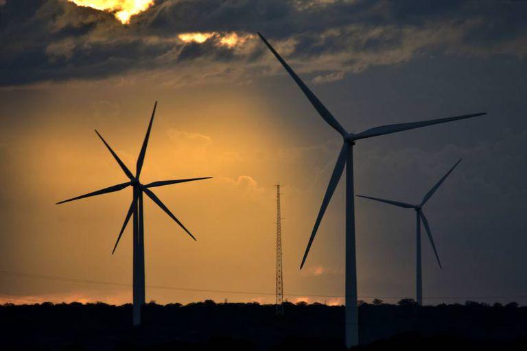 Complexo de Calangos, no Rio Grande do Norte, a maior instalação renovável da Iberdrola na América do Sul.