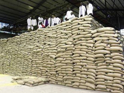 Trabalhadores sobre sacas de açúcar em usina no Quênia.