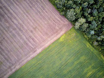 Vista aérea das plantações de soja no limite da área da Floresta Nacional no baixo Tapajós, Pará.