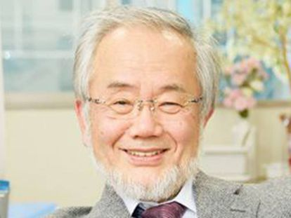 Yoshinori Ohsumi, ao saber que havia recebido o prêmio Nobel.
