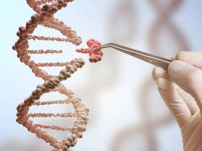 Por que ainda não se usa a modificação genética para eliminar doenças?