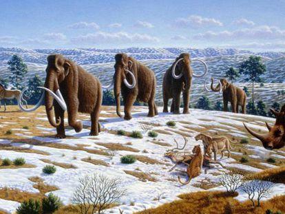 Reconstituição da fauna do Pleistoceno. MAURICIO ANTÓN