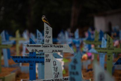 Tumbas de pessoas mortas por covid-19 no cemitério de Nossa Senhora Aparecida, em Manaus (AM), no dia 1 de março.