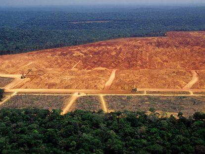 Área desmatada na Amazônia