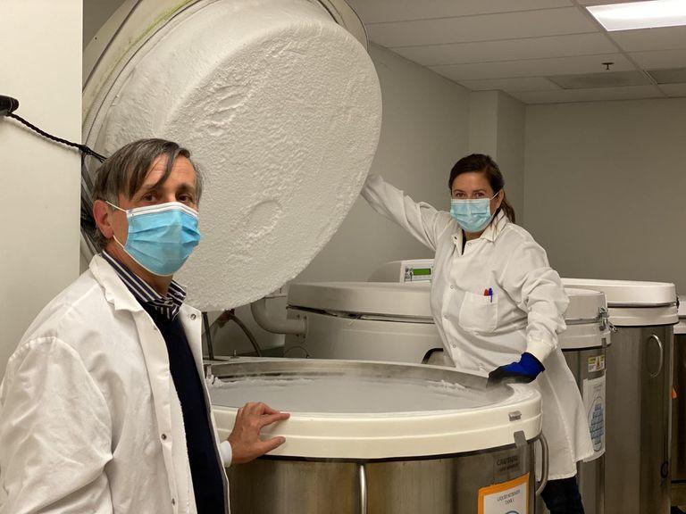 Os imunologistas Alessandro Sette e Daniela Weiskopf, do Instituto de Imunologia de La Jolla (Califórnia, EUA).