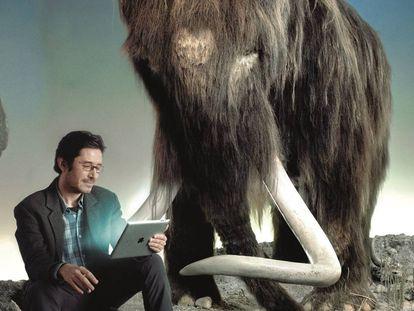 Nogués-Bravo, ao lado de um mamute no Museu de História Natural da Dinamarca