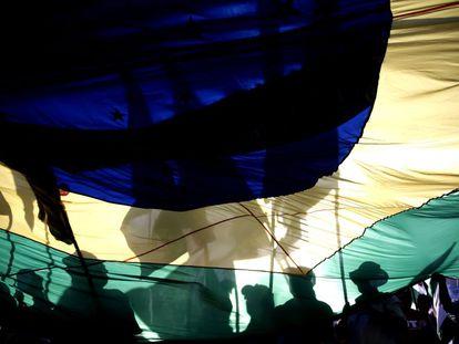 Manifestantes com a bandeira brasileira em Brasília.