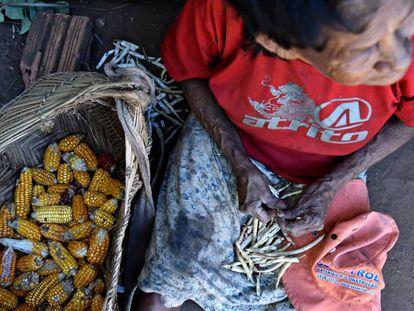 O desmatamento da Amazônia coloca em risco os povos que a habitam.
