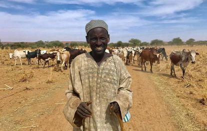 Um pastor fulani com seu gado em Tillaberi, no sul de Níger