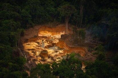 Devastação: mais de 200 hectares de floresta foram derrubados pelo garimpo na Terra Yanomami no primeiro trimestre de 2021.