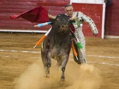 O veterano matador de touros, de 64 anos, foi chifrado e caiu de modo espantoso na 'plaza' de Ciudad Lerdo, em Durango