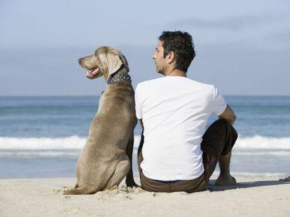 Por que os cachorros se parecem com seus donos? Ou vice-versa?