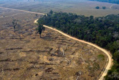 Vista aérea de áreas queimadas da floresta amazônica, no Brasil.
