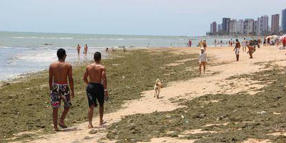 Praia de Piedade, no Recife.