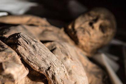 Uma das múmias cujo estudo permitiu conhecer o passado da tuberculose e da varíola.
