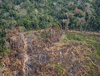 Área no Acre onde já houve desmatamento e queimada. Um levantamento do site InfoAmazonia, com base em dados públicos, indica que entre os dez municípios com mais incêndios no país, sete estão entre os que também mais sofreram com desmatamento anterior.