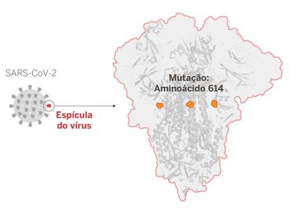 A enigmática mutação do coronavírus que agora domina o planeta