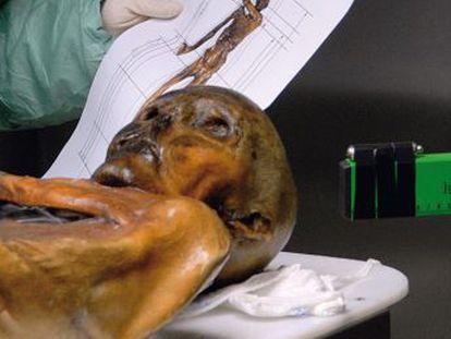 25 depois de seu descobrimento, Ötzi redesenha a Pré-história