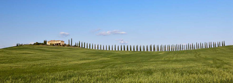 Uma granja entre campos de milho cerca de San Quirico d'Orcia, na Toscana.
