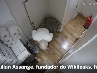 Julian Assange, espionado 24 horas por dia